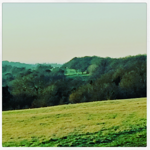 early evening view over a field and hills green filter almost like a watercolour very peaceful
